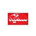 13 somayeh - تحلیل داده و هوش تجاری، آموزش Power BI و اکسل