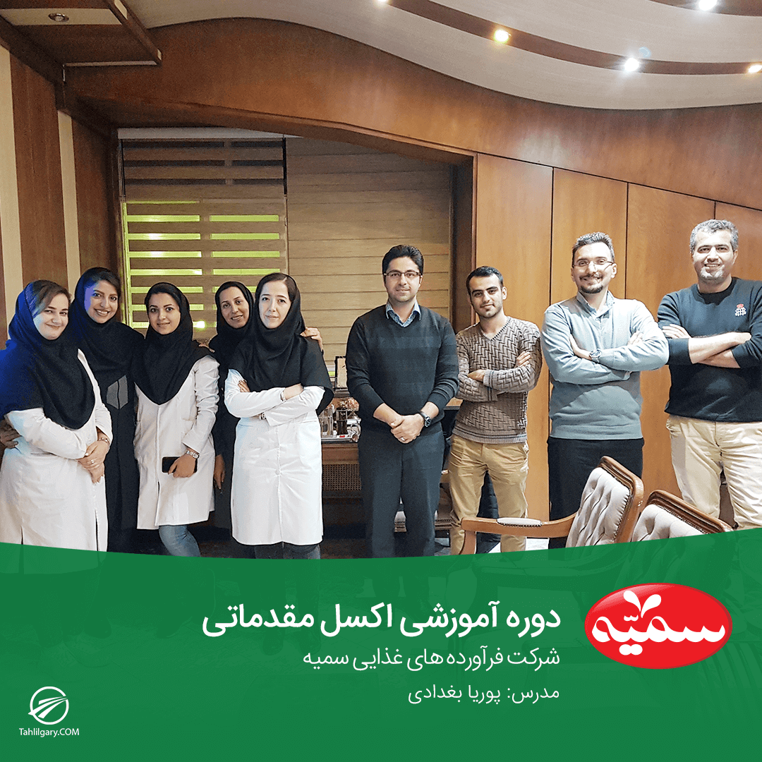 Somayeh Company - کلاس آموزش مجازی اکسل پیشرفته