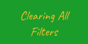 clear filter 07 300x150 - پاک کردن انتخاب های کاربر در Power BI