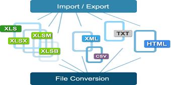 excel formats 1 - فرمت های پرکاربرد پشتیبانی شده در اکسل