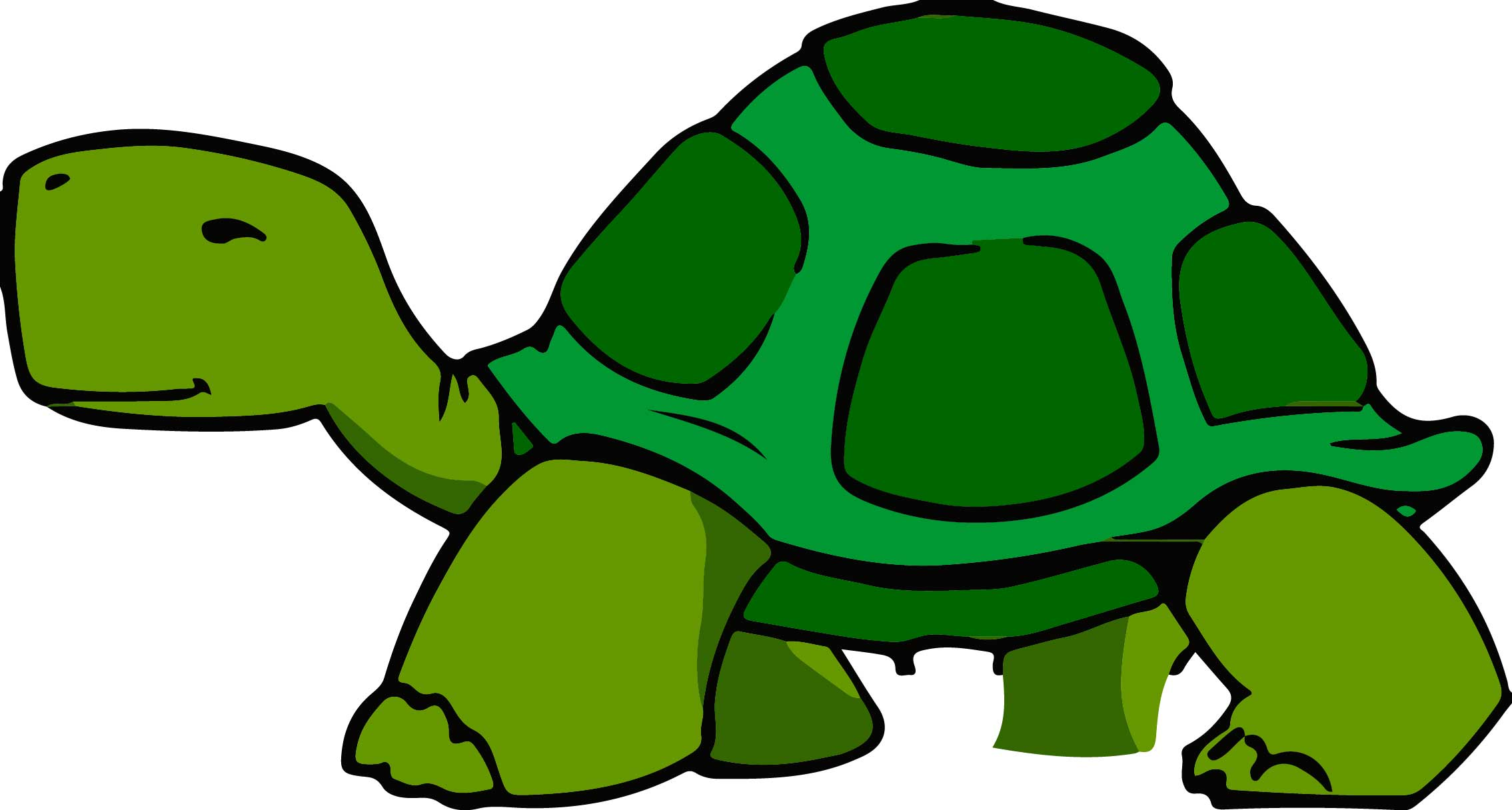 turtle - Slowly Changing Dimension چیست؟